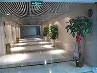 电梯等候区